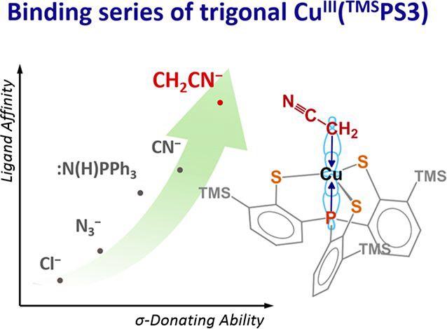 圖一:一系列三價Cu(TMSPS3)衍生物與軸位配位基的鍵結強度關係圖